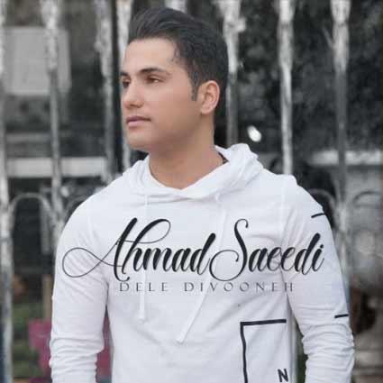 تصویر متن آهنگ احمد سعیدی دل دیوونه