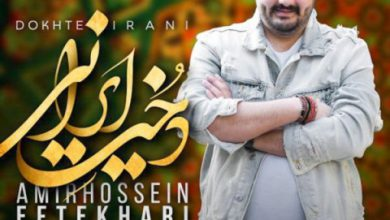 تصویر متن آهنگ دخت ایرانی امیرحسین افتخاری