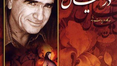 تصویر متن آهنگ در خیال محمدرضا شجریان