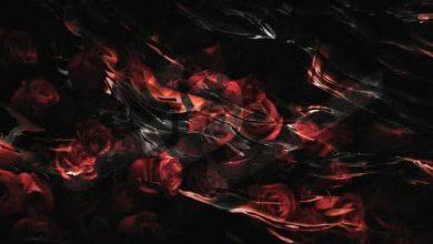 تصویر دانلود آلبوم سوز همزاد