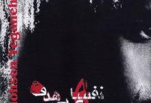 تصویر متن آهنگ نخواستم محسن یگانه