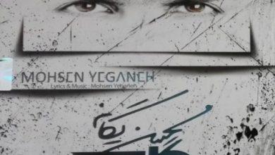 تصویر دانلود آلبوم نگاه محسن یگانه