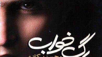 تصویر دانلود آلبوم رگ خواب محسن یگانه