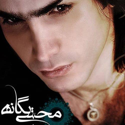 متن آهنگ محسن یگانه گله کرکس ها