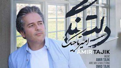 تصویر متن آهنگ دلتنگی امیر تاجیک