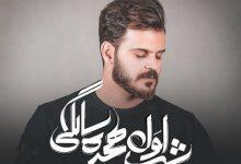 تصویر متن آهنگ شب اول هجده سالگی رضا رادمان