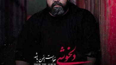 تصویر متن آهنگ دلخوشی رضا صادقی