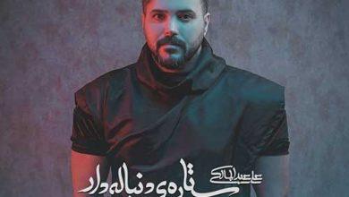 تصویر متن آهنگ ستاره دنباله دار علی عبدالمالکی