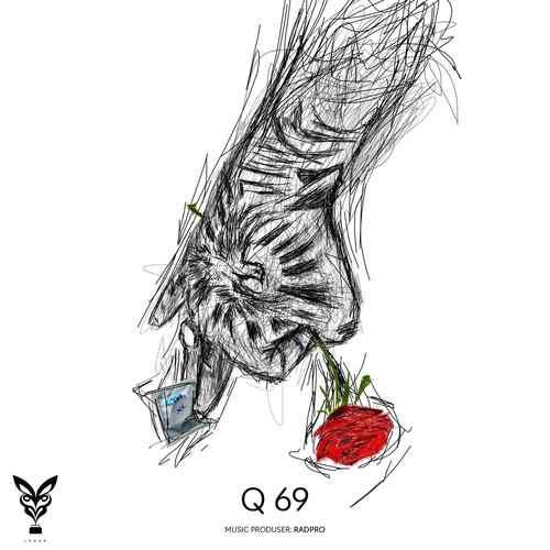 Q69 حصین